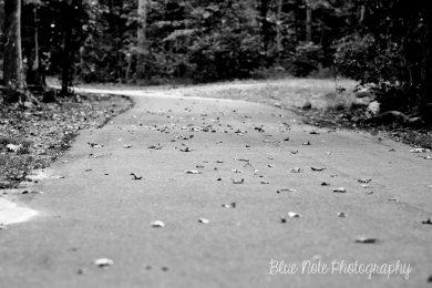 DSC_0838 black & white